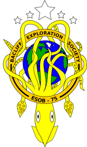 Seal of the Bacliff Expeditionary Fleet